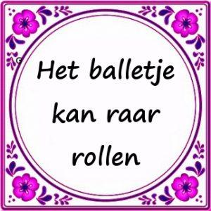 top 100 grappige feiten nederland