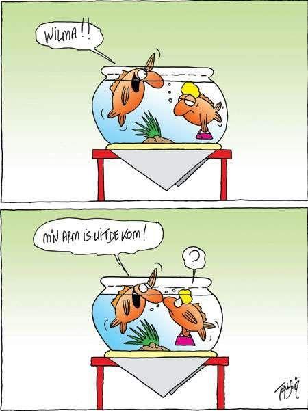Humoristische Sex cartoons